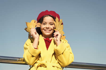Small girl wear fall outfit outdoors. Autumn bucket list. Smiling kid collecting memories. Farewell to autumn. Last autumn beams. Fall is in the air. Ideas for autumn leisure. Kid hold maple leaves Stock fotó