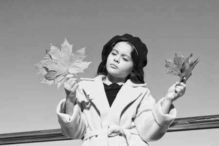 Melancholy concept. Ideas for autumn leisure. Kid hold maple leaves. Small girl wear fall outfit outdoors. Autumn bucket list. Sad kid collecting memories. Farewell to autumn. Last autumn beams