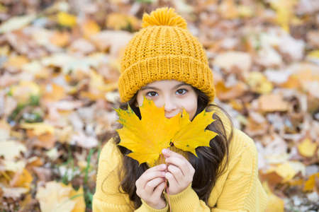 autumn knitted fashion. romantic season for inspiration. happy childhood. teenage girl relax in park. fall season beauty. enjoy day in forest. kid arranging yellow maple leaves