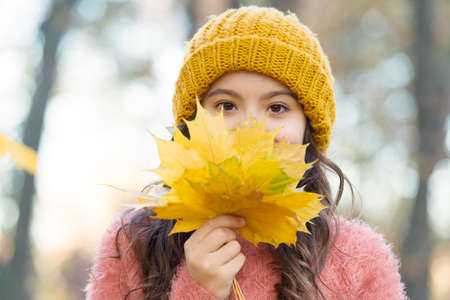 Beautiful day. beauty of fall nature. happy kid wear knitted sweater. teen girl gathering fallen leaves. child walk in autumn forest. warm clothes fashion. seasonal weather. childhood happiness