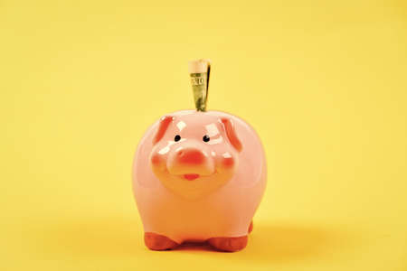 Money budget planning. Economics and finance. Piggy bank pink pig stuffed dollar banknote cash. Save money. Banking account. Earn money salary. Credit concept. Money saving. Financial wellbeing