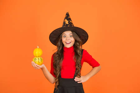 amazed kid in witch hat costume to halloween with small yellow pumpkin, happy halloween