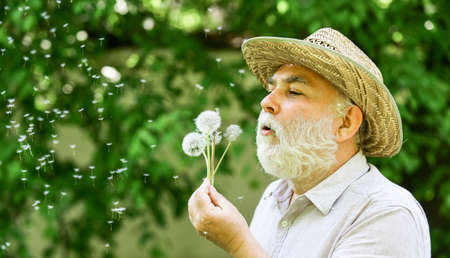 Lonely grandpa blowing dandelion seeds in park. Mental health. Peace of mind. Peacefulness. Tranquility and serenity. Harmony of soul. Elderly man in straw summer hat. Happy and carefree retirement