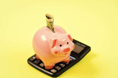 Financial wellbeing. Savings account. Money savings. Savings deposit is convenient flexible way depositing savings. Economics and finance. Piggy bank pink pig stuffed dollar banknote and calculator Stock fotó