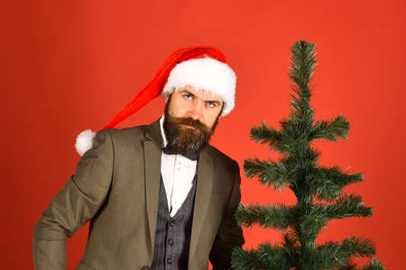 Businessman with serious face near bald Christmas tree. Stock fotó