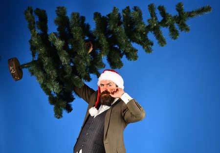 Businessman with serious face holds bald Christmas tree up