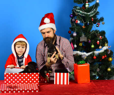 Man and boy in Santa hats play with puppies