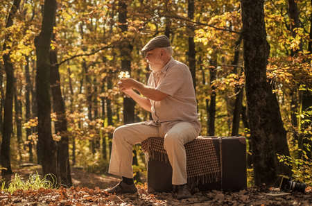 Grandfather with vintage suitcase in nature. United with nature. Weekend in nature. Vacation and relax. Retirement concept. Elderly people. Mature man with white beard in forest. Hobby and leisure