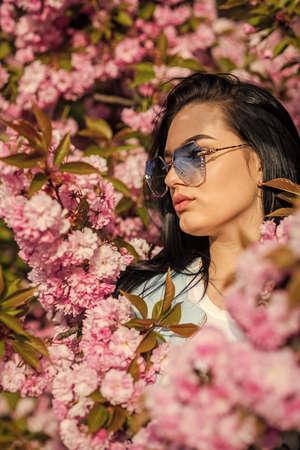 Sunny day. girl enjoy sakura blossom. woman in cherry bloom. Pink sakura. Happy womens day background. Spring design. woman enjoying sunny day in park during cherry blossom season on nice spring