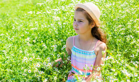 Little child with beauty look wear sun hat relaxing on chamomile flower field on sunny summer landscape, childrens day