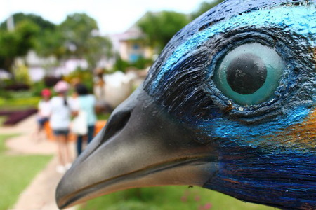 This image closed up only eye, mouth and partial face of Bird statue that is placed as landmark of Chainart bird park of Thailand. Blur people who were behind the statue.