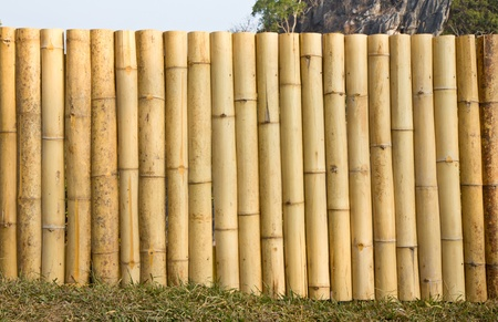 Bamboo wall background  Stock Photo - 12283051