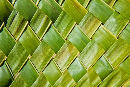 basketry: Zigzag interlocking of coconut leaves
