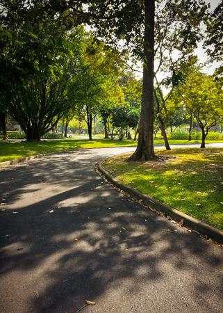 long shot: tiro di marciapiede nel parco Archivio Fotografico