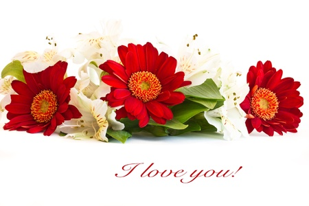 Three red gerbera and alstroemeria on a white background