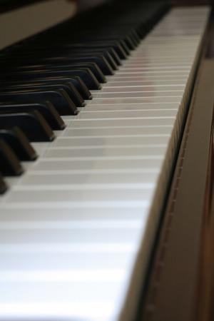 bois �b�ne: Perspective de mise au point d'un clavier de piano d'�b�ne