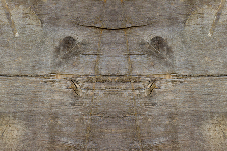 natural face: Natural face creature in old wood plank background