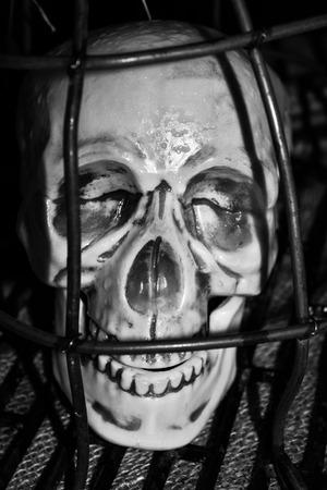 frustrating: Frustrating skull in cage after torture