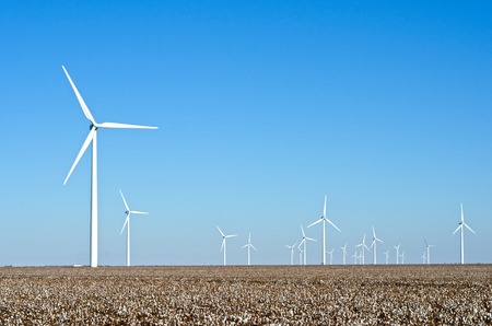 The enormous size of wind turbines on the Brazos Wind Farm in the Panhandle of Texas dwarfs the surrounding countryside, including the cotton fields in which they are located.  Each one of these massive turbines produces enough power to run 187 homes, and