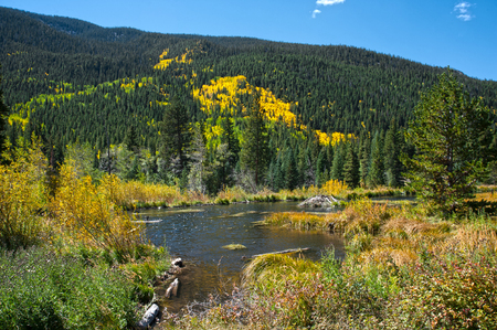 A beaver lodge sits in the middle of a pond in the mountains, photographed agains the vibrant colors of Autumn in the high country. Stock Photo