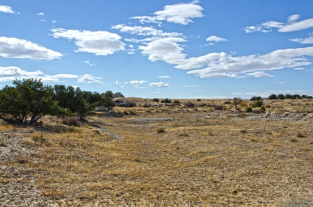 The depressions left from years of wagon trains along the Santa Fe Trail are still easily recognizable near Thatcher, Colorado.