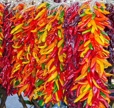Multicolored chili pepper ristras hang together in Hatch, New Mexico. Banco de Imagens