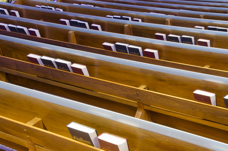 Rows of pews in a church have book shelves holding Bibles and pews behind the seats.