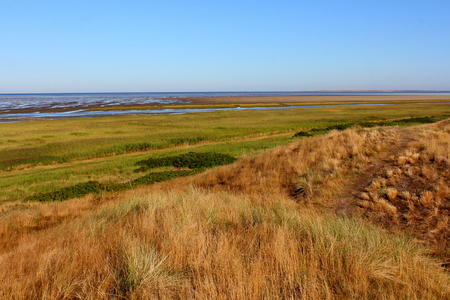 dikes: View of grassy dikes and Wadden Sea from Frisian Mando Island in Denmark Stock Photo