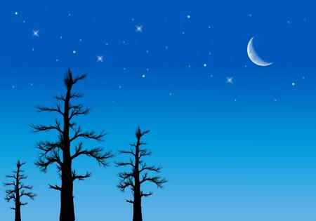 Night sky with moon and stars photo