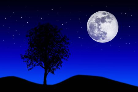 Night sky with moon and stars Stock Photo - 8485140