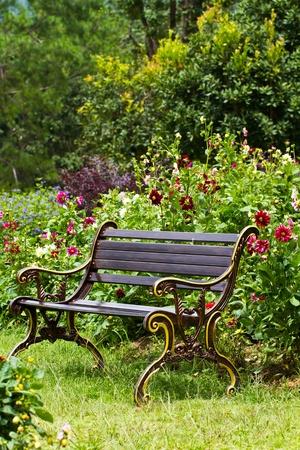 metal garden chair in the garden photo