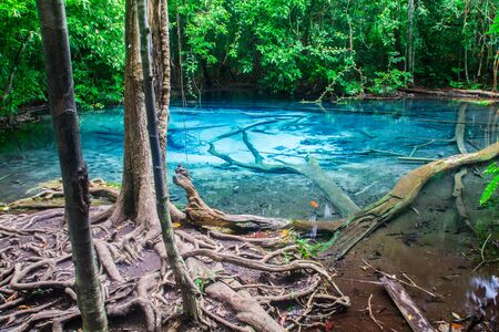 unseen: Emerald Pool is unseen pool at Krabi in Thailand.