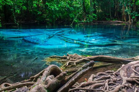 pool at Krabi Province in Thailand. photo