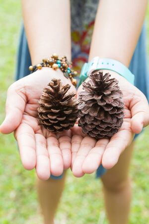 woman holding dry pine cones in her hands