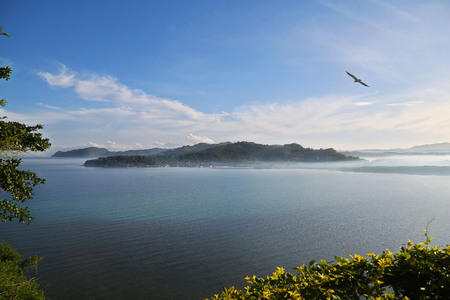 morning fog, mist at viewpoint, Moalboal seightseeing, fying bird, tranquil scene, Cebu Province, calm sea, sunny day, islands