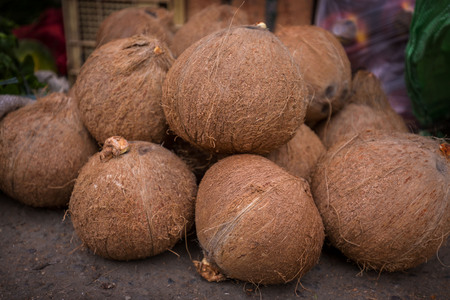 group of coconuts  on the ground Standard-Bild