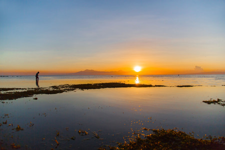 low tide shows the green water plant in a yellow orange light at the golden hour, a tranquil nature photography with a person walking in the shallow water