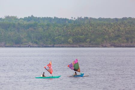 Two sail boat infront of an island coastline with coconut palm trees and with green hills and mountain