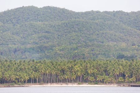 White sand beach with coconut palm trees on a little island with green hills and mountain a idyllic tropical scene