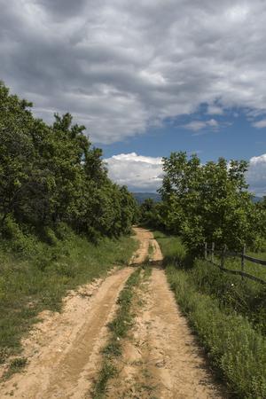 Rural Roads.Rural Village Landscape at summer