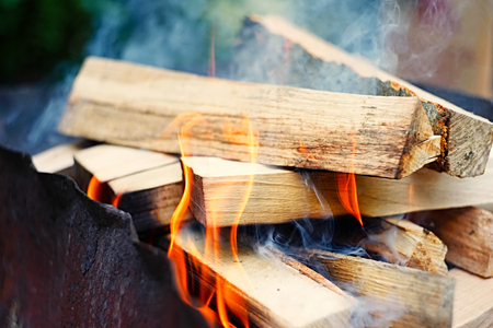 ember: Fire, flames from wood ember for grill or bbq picnic,