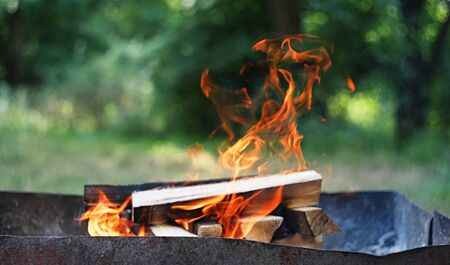 Fire, flames from wood ember for grill or bbq picnic,