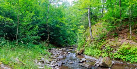 Frühlingszeit entlang des Little Pigeon River in den Great Smoky Mountains Nationalpark. Standard-Bild - 65291161