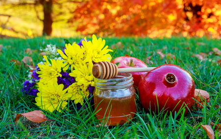 rosh hashanah jewesh holiday concept - honey, apple and pomegranate lying in the grass traditional symbols.