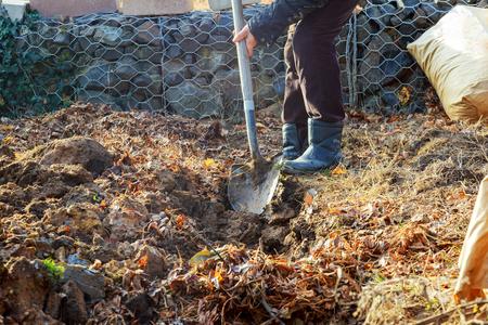 shoveling: Man shoveling ground for landscape repair man digging shovel