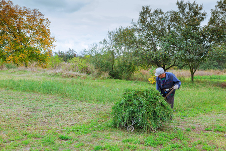 mows: Farmer in old clothes mows grass in the field Stock Photo