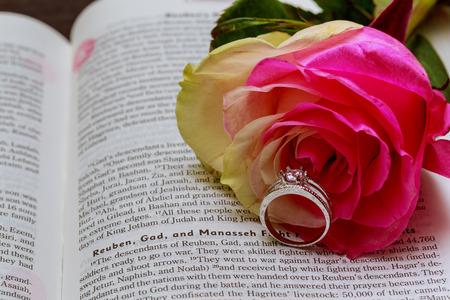 bible flower: Wedding rings on Bible Rose, wedding rings, book