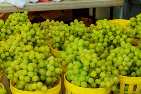 The background with green ripe grapes closeup