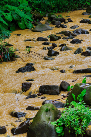 After a heavy rain storm, muddy brown water runoff fills a small stream surrounded by green bushes and trees