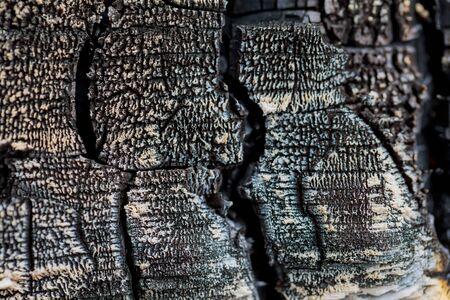 Burnt wood background texture Stock Photo